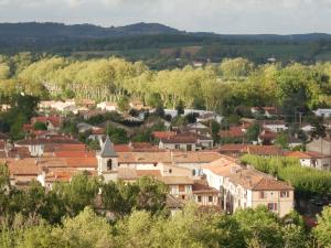 Couvreur Cagnac les Mines 81130