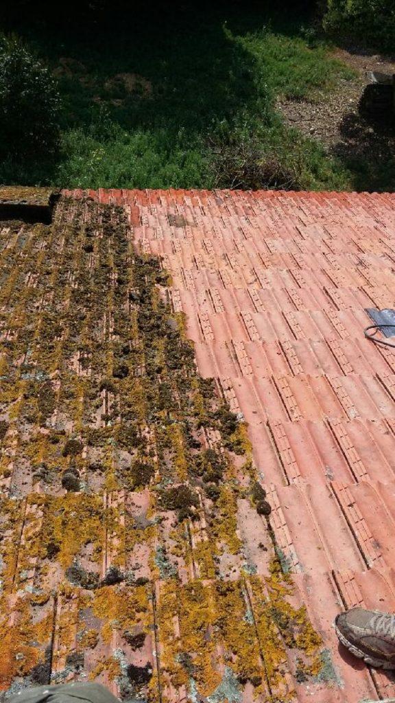 nettoyage toiture 81 avant - aprés